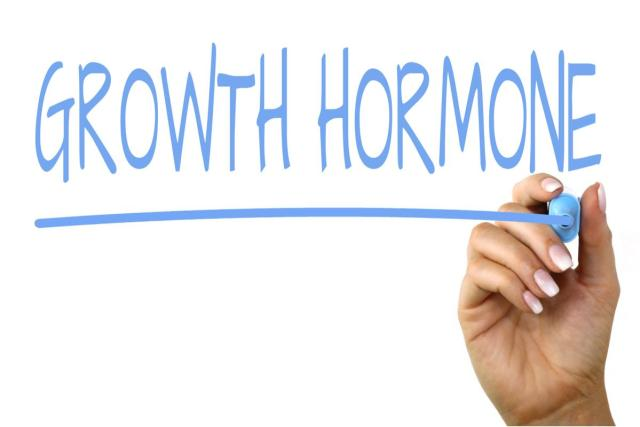 All About Human Growth Hormones