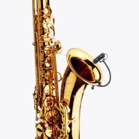 DPA d:vote 4099S Saxophone Clip Microphone