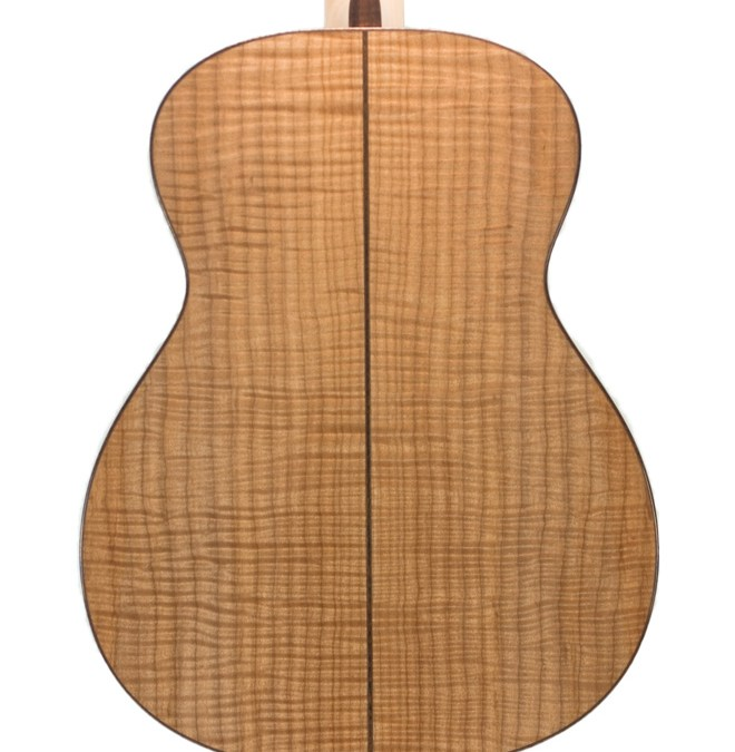 Tonewood Spotlight: Maple, the Overlooked Alternative