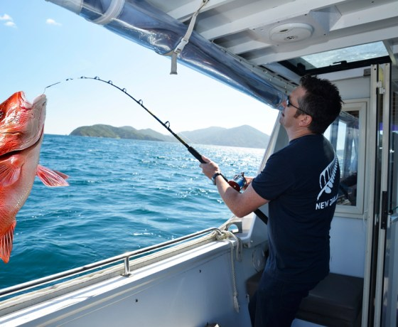 Full day fishing charter with Sounds Connection