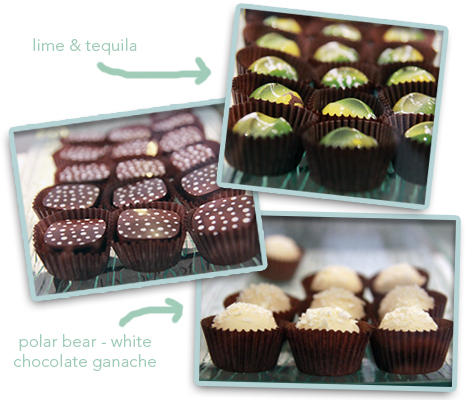 assortedchocolates