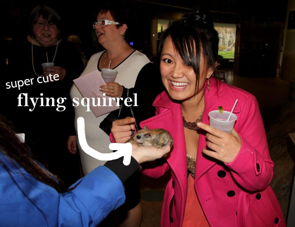 SoundsLikeKnock Ngoc Nguyen petting a flying squirrel