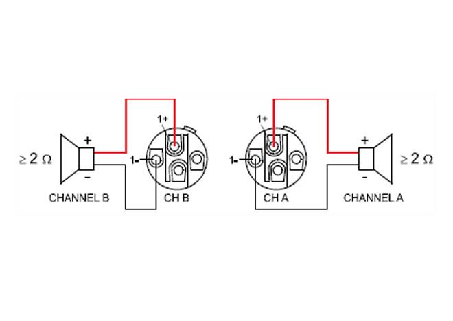 dual speakon wiring