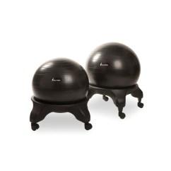 Ergonomic Chair Là Gì Boling Company Evolution Ball Chair1 Jpg