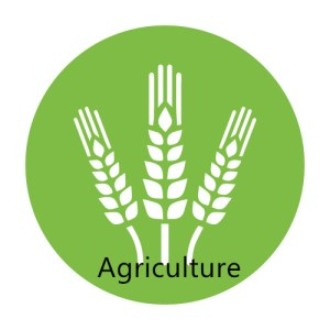 agriculture 7