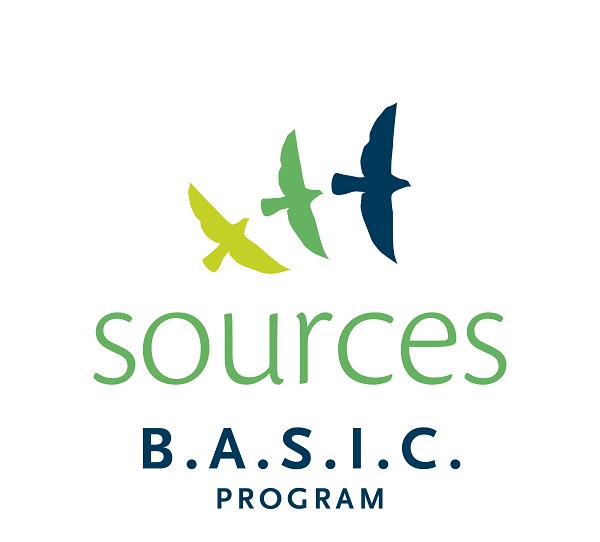 BASIC Program Logo