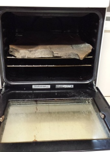 Photo graph showing a stone in the Devonport Fly Fishing Club's Lodge's oven.