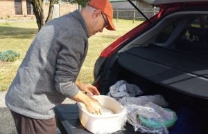 Kon turning over the bread dough. We carried it around in the back of the car for most of the day.