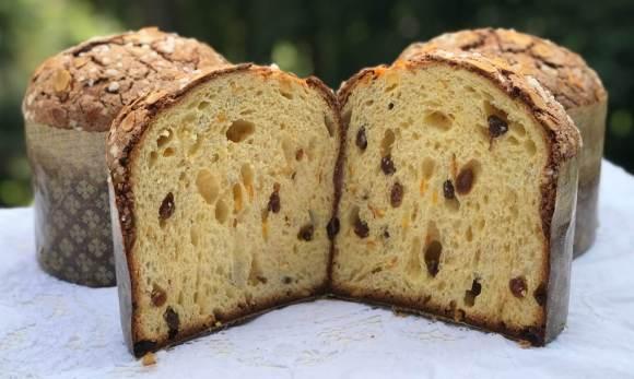 pannetone crumb