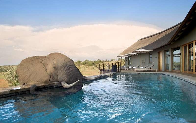 Victoria Falls Wallpaper Mhondoro Safari Lodge Amp Villa Welgevonden Game Reserve