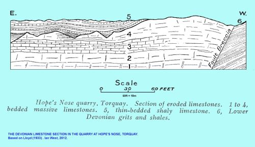 small resolution of a diagram of the devonian limestone cliff in hope s nose quarry torquay devon