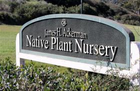 The James A. Ackerman Native Plant Nursery.