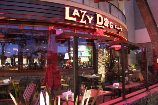 2011-12-28 Happy Hour at Lazy Dog Cafe, Torrance 080
