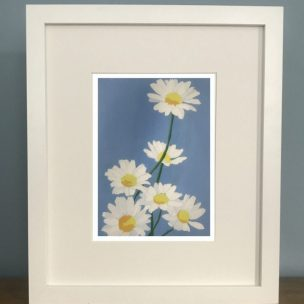 Daisies Limited Edition Reduction Lino Print Framed