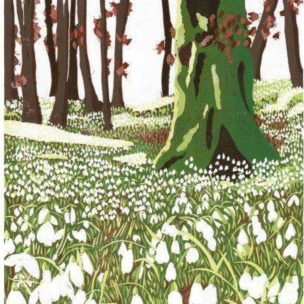 Snowdrop Woods limited edition reduction Lino print unframed