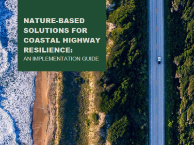 Nature-Based Solutions Implementation Guide