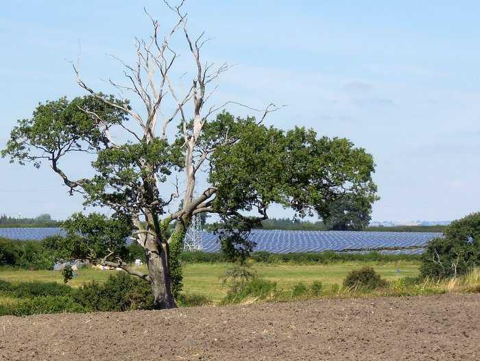 A solar farm catches the eye