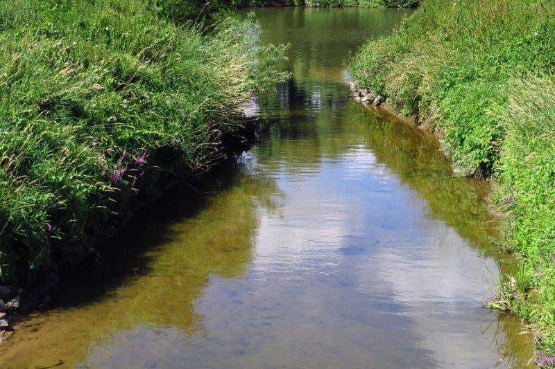 A short road walk takes us over the river Chelt