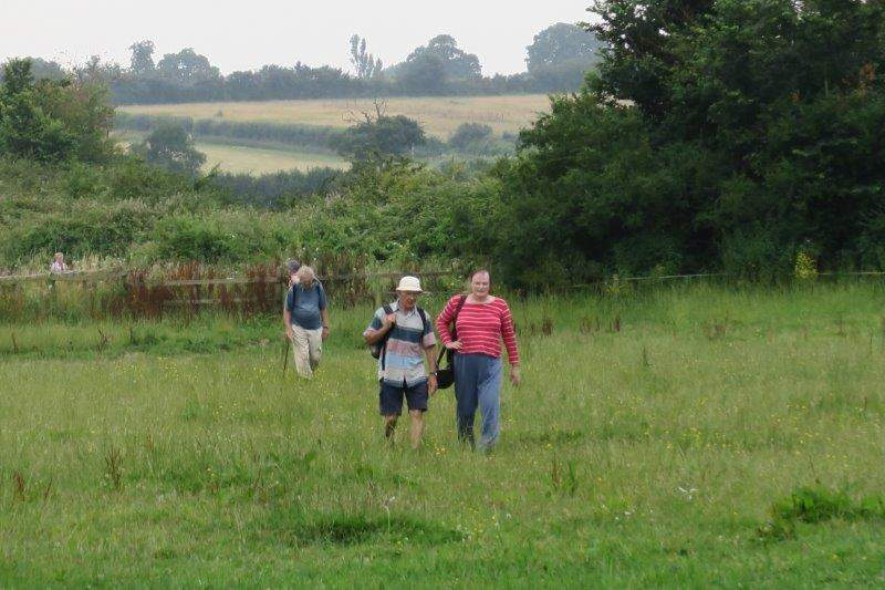Making our way through horse paddocks