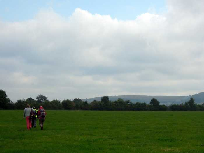 Selsley Common over there