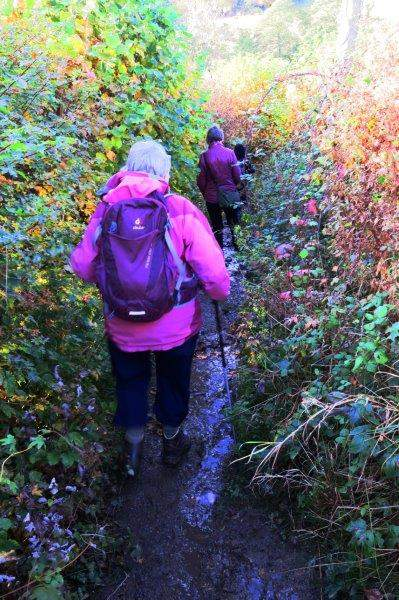 And down a rather wet path
