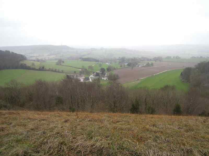 Stinchcombe
