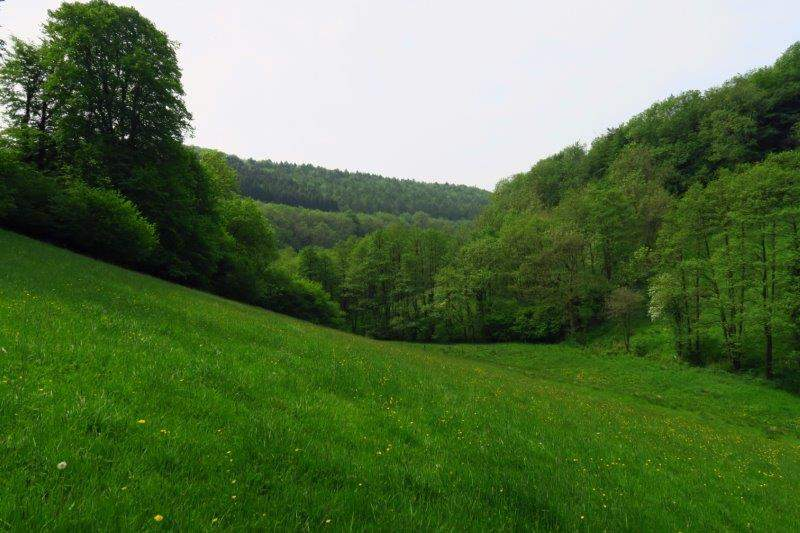 The view down the valley