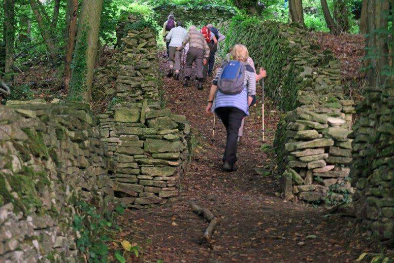 Continuing through the woods to Amberley
