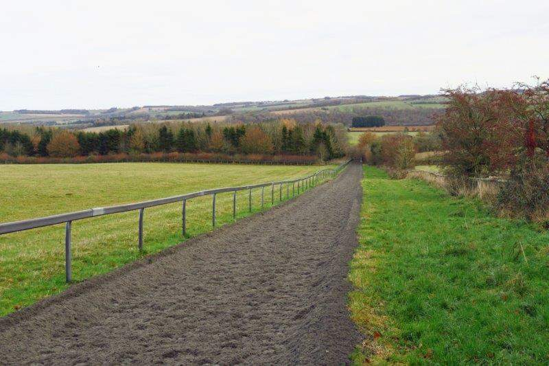 Then across race horse gallops