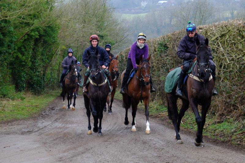 Then a brief encounter with race horses from the nearby Tom George yard