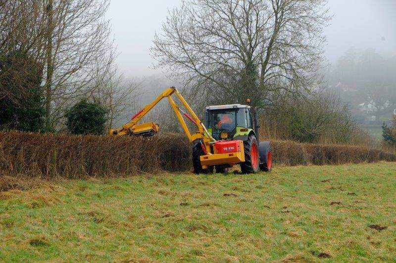 A bit of hedge trimming going on