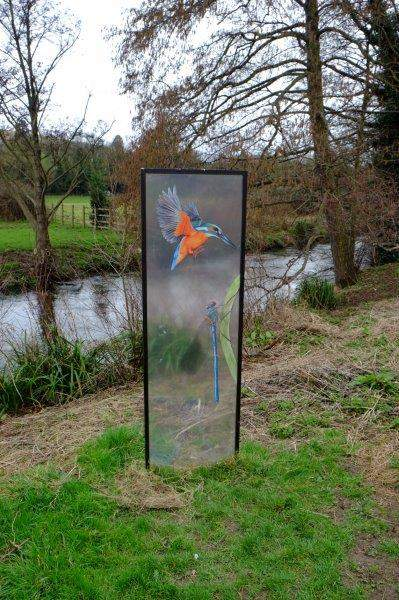 Our only chance of seeing a Kingfisher