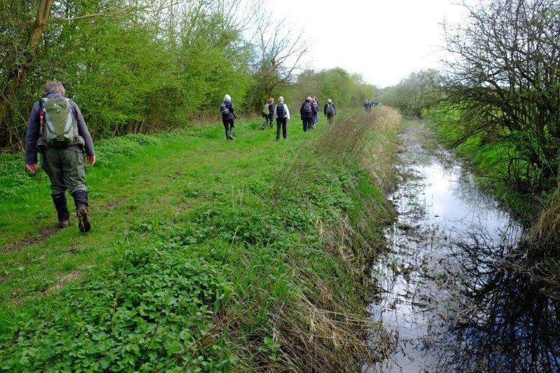 Before heading along an old canal - hidden by trees on our right is a  drainage ditch
