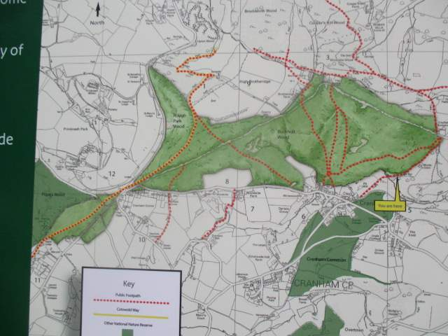 Not far into Cranham according to the map