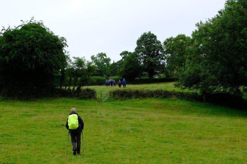 Approaching the Bisley to Birdlip road