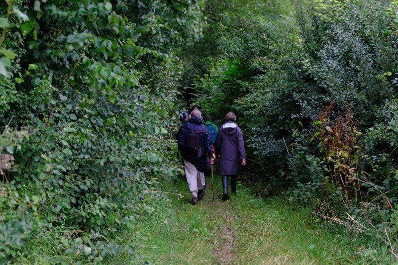 Before we head into a narrow path between hedgerows