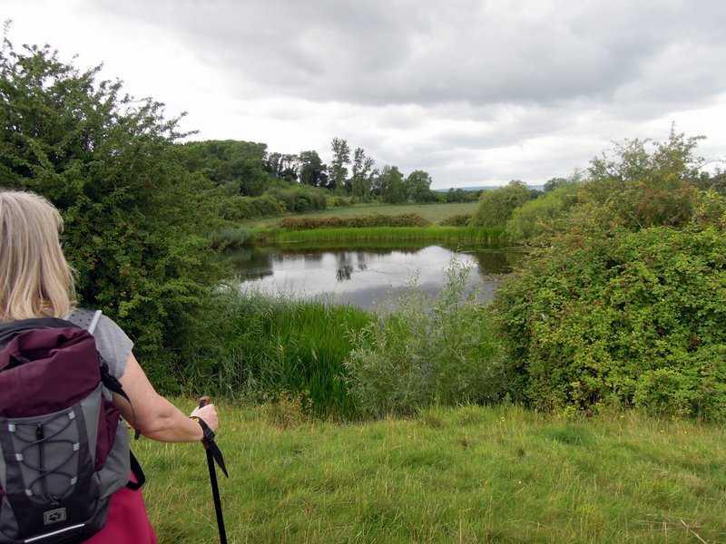Madam's End pond