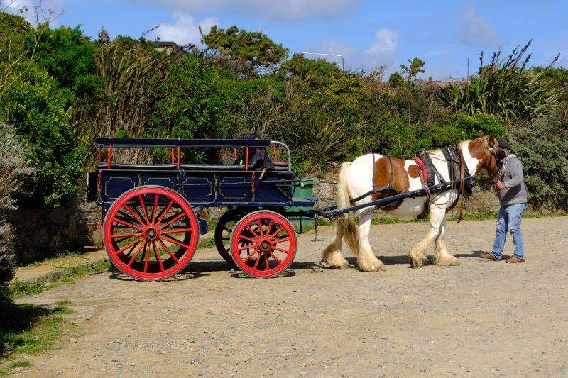 With a horse and cart behind us