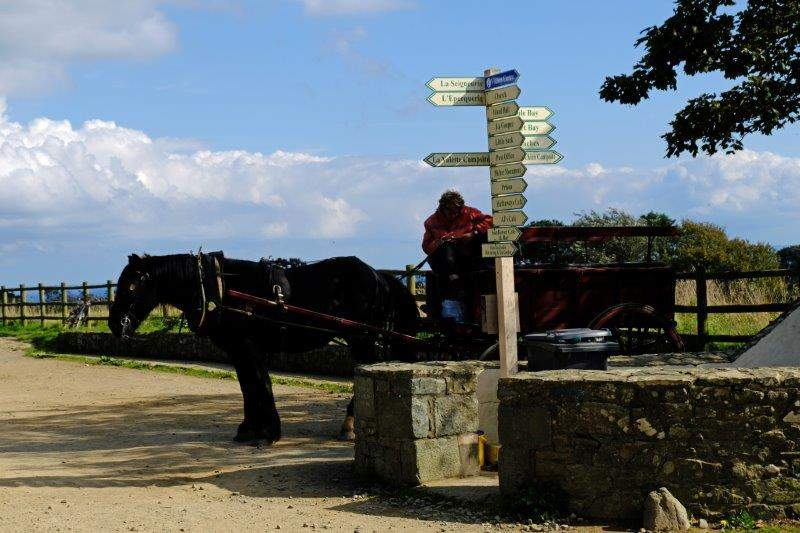 Another horse and cart waiting for passengers at the crossroads at the  far end of the village