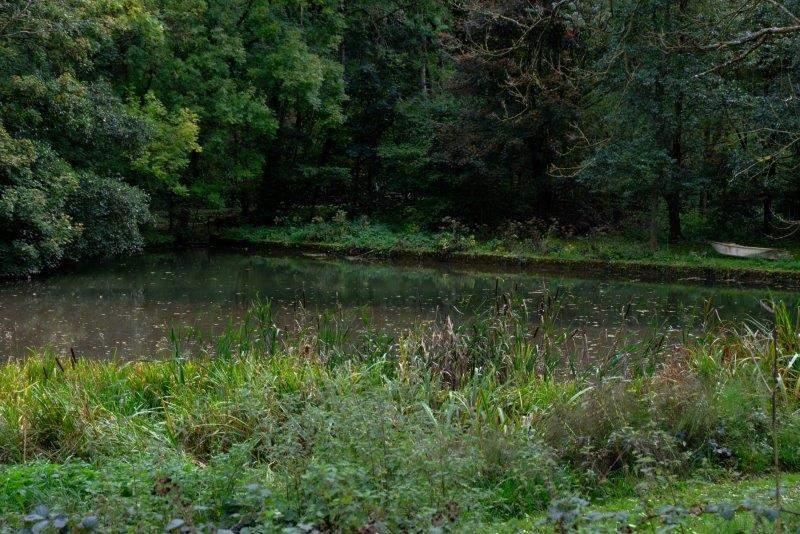 A secretive pond