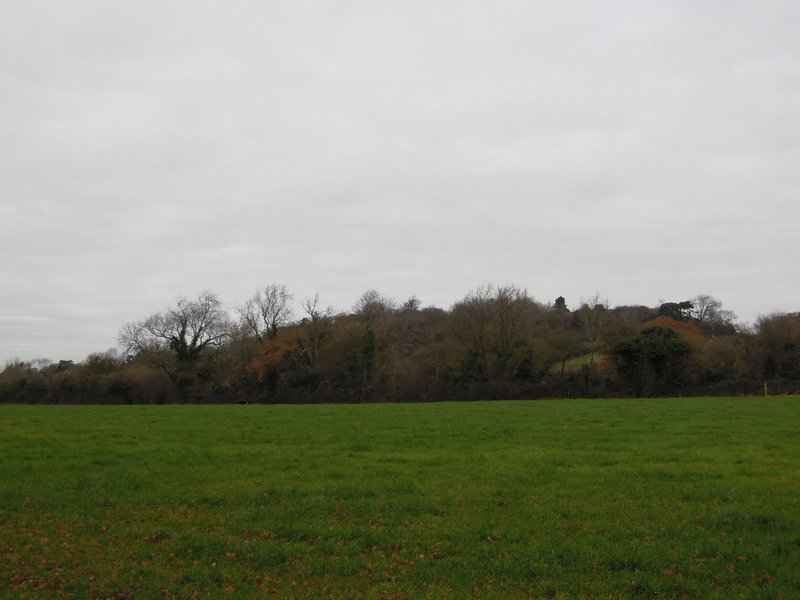 Nut Hill is quite small, but perfectly formed