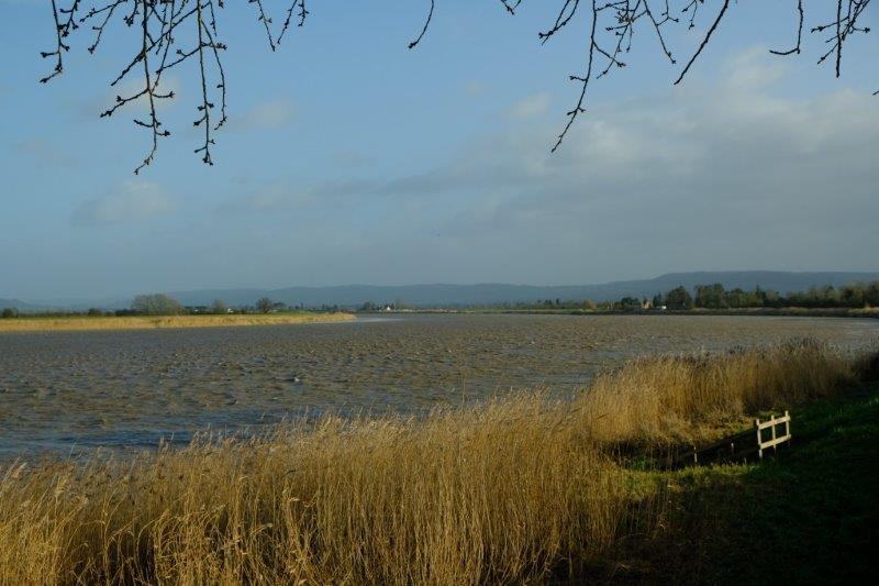 Back to the banks of the Severn