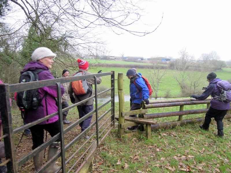 Gate, stile or horse jump? What a choice.