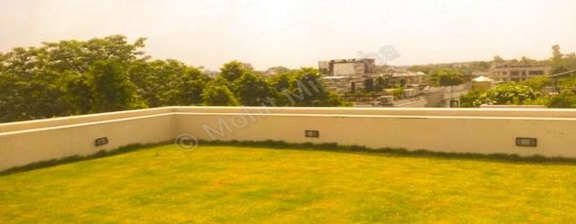 terrace 19-jun-15 (2)
