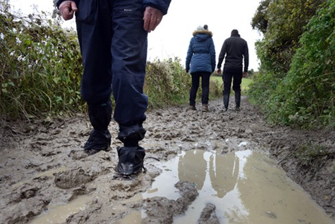 Muddy walks in the South Downs