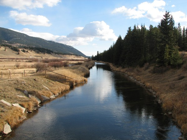 Crowsnest River channelized reach looking  down to Blairmore