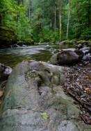 wet creeks
