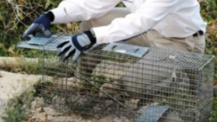 Pest Control SETX - industrial pest control Port Arthur