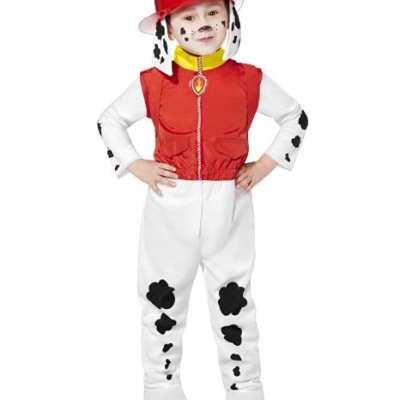 The Cutest Paw Patrol Costumes for Kids
