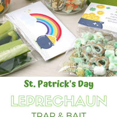 St. Patrick's Day Leprechaun Trap & Bait